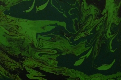 giessmedium in gruentoenen 30x24