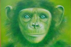 gruenes aeffchen