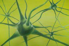 Neurone-Acryl-50x70-cm-e1564737402626